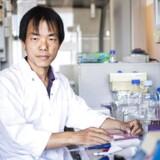 Den gartneruddannede kinesiske forsker Zhang Yang får æren af at have ledet det team, der har opfundet en ny metode til at opfinde og producere biologiske lægemidler som antistofmidler mod kræft, medicin mod multipel sklerosde og blødermedicin hurtiger og mere effektivt end hidtil.