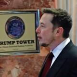 Elon Musk på vej til møde i Trump Tower i New York. Den administrerende direktør for Tesla og Space X har valgt at gå en anden vej end mange af de andre topchefer i teknologi-branchen, der er stærkt kritiske over for præsident Donald Trump. Foto: Kena Betancur/AFP