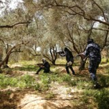 Politifolk fra Hamas tager opstilling i jagten på den mistænkte bombemand. Bombemanden er nu død af sine kvæstelser.