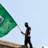 (Arkivfoto) En palæstinenser viser Hamas-bevægelsens flag under en demonstration ved uden for Klippemoskeen i Jerusalems gamle bydel i juli 2015.