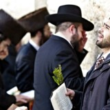 Ortodokse jøder ved grædemuren i Jerusalem under sabbat. At sige, at »Israels folk ikke har forbindelse til Tempelbjerget og Grædemuren. Det er som at påstå, at Kina ikke har tilknytning til Kinas Store Mur og at Ægypten ikke har forbindelse til pyramiderne,« siger Israels premierminister, Benjamin Netanyahu om UNESCOs resolution.