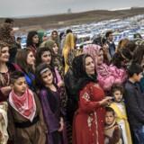 Arkivfoto af syriske flygtninge i flygtningelejre i Irak.