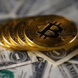 Den virtuelle valuta bitcoin stakket oven på noget så gammelkendt som dollarsedler. Foto: Dado Ruvic/Reuters