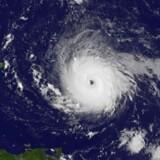 Et luftfoto fra den amerikanske rumfartsadministration NASA viser orkanen Irma, idet den tager til i styrke til en kategori-5 orkan 5. september 2017.