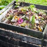 Skal dit affald i komposten eller i skraldespanden?