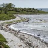 Romsø i Storebælt er 109 hektar og en af Danmarks mange ubeboede øer.