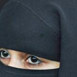 Et nyt integrationsudspil skal gøre det strafbart at bære burka i Østrig. Integration og islam står højt på dagsordenen for de østrigske vælgere, der skal til nyvalg til oktober