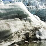 Danske forskere har kortlagt 350 gletsjere og konkluderer, at afsmeltningen sker hurtigere end tidligere. (Foto: Michael Bothager/Scanpix 2014)