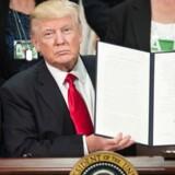 Onsdag skrev Donald Trump under på en ordre om at få bygget en mur på grænsen mellem USA og Mexico.