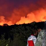 Skovbrande hærger områder på halvøen Lustica på Montenegros kyst ud til Adriaterhavet.