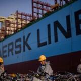 ARKIVFOTO. For hele 2016 venter Mærsk-gruppen nu at tjene mindre end 1 mia. dollar i det underliggende resultat.