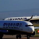 Ryanairs overskud steg i tredje kvartal på trods af store problemer med selskabets piloter. Reuters/Phil Noble