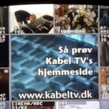 Et vue på TV-skærmen anno 1997. Allerede dengang havde det daværende Tele Danmark knap 60 procent af alle kabel-TV-kunder i Danmark. Arkivfoto: Bjørn Kähler, Scanpix