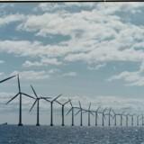 Havvindmølleparken Horns Rev 3 ud for Esbjerg er et stridspunkt, når partierne forhandler om at fjerne PSO-afgiften på strøm. Scanpix/Søren Bidstrup