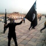 ARKIVFOTO af et medlem af Islamisk Stat.