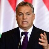 (FILES) Ungarns største uafhængige avis, Népszabadság, lukkede pludseligt sidste weekend midt i en salgsproces. Ifølge avisens ansatte er det Ungarns premierminister, Viktor Orbán, der via regeringstro rigmænd står bag. Her ses Orbán efter folkeafstemningen om asylkvoter tidligere i oktober, hvor Orbáns kampagne fuldstændig dominerede det ungarske mediebillede. / AFP PHOTO / ATTILA KISBENEDEK