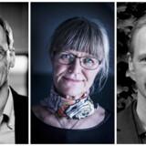 Torben M. Andersen (tv), Nina Smith (midtfor) og Bo Sandemann Rasmussen (th).