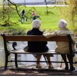 De populære investeringsforeninger kræver gebyrer i et omfang, der kan komme til at koste flere års pension. Scanpix/Torben Christensen