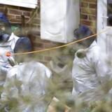 Det britiske politis antiterrorkorps siger, at den tidligere russiske dobbeltagent i Salisbury og hans datter formentligt først kom i kontakt med nervegift i deres hjem.