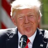 Arkivfoto. Det kommer ikke til at koste momentum i de kommende år for USA's vindmøllebranche, at præsident Donald Trump vil trække landet ud af den såkaldte Paris-aftale.