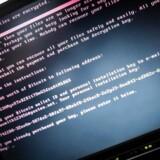 En ondsindet opdatering af et ukrainsk skatteindberetningsprogram er en væsentlig årsag til, at computervirussen Goldeneye har ramt så hårdt. Nu anklages softwarefirmaet for at have negligeret gentagne advarsler. Arkivfoto: Rob Engelaar, EPA/Scanpix