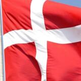 Et sted mellem 200 og 500 dansksindede sydslesvigere skønnes at ville være interesseret i at få dansk statsborgerskab.