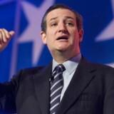Republikaneren Ted Cruz vil være amerikansk præsident.
