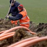 En fælles udsendt melding om antallet af kunde koblet på fibernet har vakt undren i branchen. Foto: Johan Gadegaard