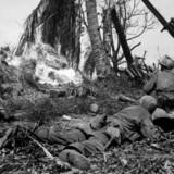 Marshalls opdagelse på Kwajalein-øen i 1944: Kun 15 ud af 100 amerikanske soldater skød mod fjenden under 2. verdenskrig.