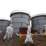 For tre år siden skete ulykken i Fukushima atomkraftværket. Dette foto er taget i november 2013, hvor pressen er inviteret på besøg.