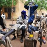 Danske soldater skal ikke på FN-mission i Mali, mener DF.