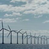 Horns Rev 3 bliver den største vindmøllepark i Vattenfall-regi. Man driver allerede lillebroderen Horns Rev 1, mens DONG Energy har Horns Rev 2. Vattenfalls to største parker er indtil videre britiske Thanet og tyske DanTysk. Sidstnævnte blev indviet i 2014. Foto: Søren Bidstrup