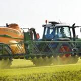 »Landbruget har været under pres i flere år, og som prognoserne er nu, tyder det på, at det bliver nødvendigt med yderligere milliardnedskrivninger på landbruget,« siger ekspert.