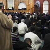 ARKIVFOTO: Fredagsbøn i moskeen ved Det Muslimske Trossamfund på Dortheavej i Københavns Nordvestkvarter.