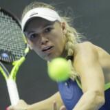 Caroline Wozniacki tabte senest til Darja Kasatkina i Skt. Petersborg i kvartfinalen. I Qatar Total Open træder den danske verdensetter ind i anden runde. Scanpix/Dmitri Lovetsky