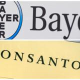 Bayer er kommet med et tilbud på 128 dollar per aktie i Monsanto - det fjerde tilbud i rækken - og det bud var højt nok for Monsanto til at takke ja.