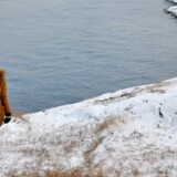 Tian Xiaochen nød især stilheden i Grønland. Privatfoto