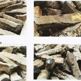 »7000 ege« hedder dette billede af Joseph Beuys, der kan ses i ?Galerie Moderne i Silkeborg. Fotografierne henviser til de basaltsten, der blev opsat i forbindelse med det store træbeplantningsprojekt tidligt i 1980erne i den tyske by Kassel. Pressefoto