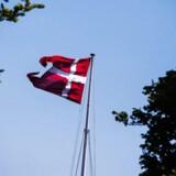 I mange år lå Island, Norge og Slovenien ellers over Danmark, når det gælder om at skabe økonomisk lighed.