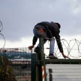 En migrant klatrer over et hegn ved Eurotunnelen ved Calais i det nordlige Frankrig. Foto: Philippe Huguen/AFP