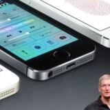 Det er et år siden, at Apple-topchef Tim Cook kunne fremvise iPhone 5S og iPhone 5C. Om en måneds tid ventes den nye udgave klar, og den bliver en del større end forgængerne. Arkivfoto: Glenn Chapman, AFP/Scanpix