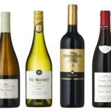 Hans-Vinding Diers, som normalt står for dyre vine fra Patagonien, har blandet en let drikkelig mendoza, der er til at betale.