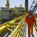 Mærsk Oil - Oliefelter Nordsøen, Halfdan Feltet
