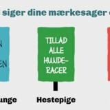 Screendump fra skolevalg.dk, der har været omdrejningspunktet for det skolevalg, som Undervisningsministeriet er initiativtageren bag.