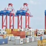 Raterne for at fragte containere faldt drastisk denne uge.