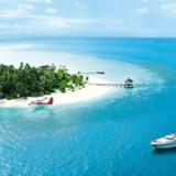 Egen ø, egen luksusyacht, egen tjenerstab. Og egen ankomst i privat vandfly til det maldiviske paradis på resortet Rania Experience.