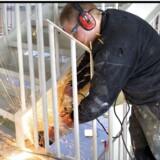 I byggebranchen steg antallet af konkurser i marts med 50 porcent i forhold til sidste år. ARKIVFOTO. Foto: Torben Christensen, Scanpix 2013