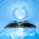 Torne-floden yder det største bidrag til det verdensberømte ishotel, der er bygget af tusinder tons sne og krystalklart is.