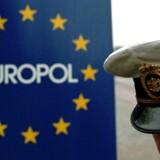 Europol og de amerikanske myndigheder slog i fællesskab ned på 133 netsteder, der solgte kopivarer.