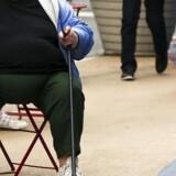Det er muligt at bekæmpe overspisning med chokbehandling.